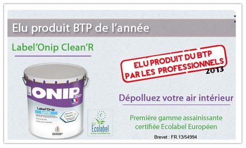 Peinture dépolluante Label'Onip Clean'R