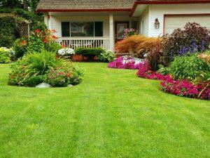 Un jardin au top pour cet été