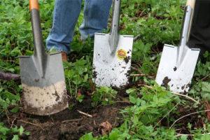 Entreprise d'aménagement de jardin et d'élagage à Houilles